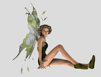 Nature pixie Royalty Free Stock Image