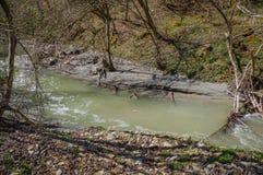 Nature polution Royalty Free Stock Photos