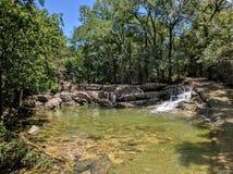 Nature pond Stock Photo
