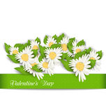 Nature Postcard with Chamomile Flowers for Valentines Day Royalty Free Stock Photos