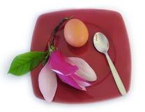 Nature pour le déjeuner Image stock