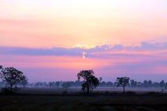 Nature prairie rural in Thailand stock image