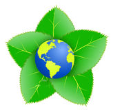 Nature protect  the earth. Illustration representing the earth on leafs, expressing the idea that our planet is protected by the nature Stock Photo