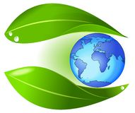 Nature protect earth Stock Image