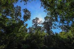 Nature pure à la réserve naturelle d'Umphang, Tak Province, Thaïlande du nord-ouest photo stock