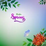 Nature red flowers and blue butterfly on soft color background with spring text Stock Photo