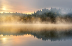 Nature. Reflection of the woods by a lake a misty morning at sunrise Stock Photography