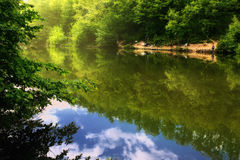 Nature reflections on lake Royalty Free Stock Photos