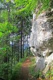 Nature in region Liptov, Slovakia Stock Photography