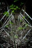 Nature reprenant un système de fer des tiges image stock