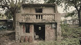 Nature reprenant une vieille maison abandonnée Photos stock