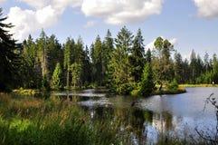 The nature reservation Kladska stock image