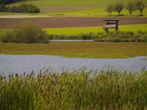 Nature reserve. Observation platform on the edge of a nature reserve Stock Photos