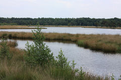 Nature reserve between Best and Son Stock Photography