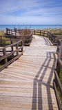 Nature Reserve Boardwalk  Royalty Free Stock Image