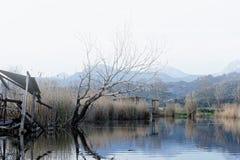 Nature Reserve, Oasis Lipu Massaciuccoli, Lucca, Tuscany Stock Image