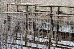 Nature Reserve, Oasis Lipu Massaciuccoli, Lucca, Tuscany Royalty Free Stock Image