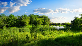 Nature reserve Royalty Free Stock Image