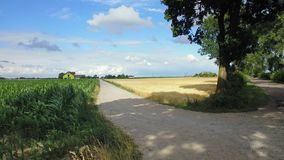 Nature Reserve, Road, Sky, Field stock images
