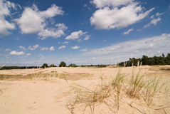 Nature Reserve with Sanddrift Stock Images