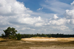 Nature Reserve with Sanddrift Stock Photo
