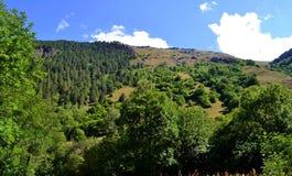 Nature reserve teberda Karachayevo-Cherkessia. Photo taken on: July 27 Saturday, 2013 Royalty Free Stock Photo