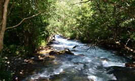 Nature reserve teberda Karachayevo-Cherkessia, Russia. Photo taken on: July 27 Saturday, 2013 Stock Photography