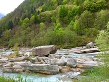 Nature Reserve, Vegetation, Wilderness, Stream stock photo