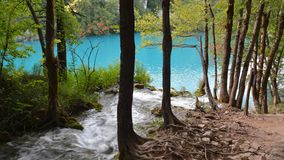 Nature Reserve, Water, Tree, Water Resources royalty free stock images