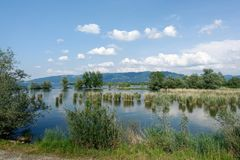 Nature Reserve, Wetland, Water Resources, Sky royalty free stock photography