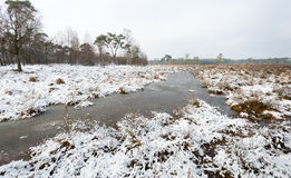 Nature reserve in wintertime Stock Image