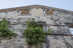 Nature retakes an abandoned ruined building Stock Images