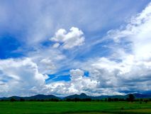 Nature. Rice fields in Thailand Royalty Free Stock Images