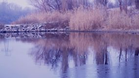 Nature. River, reeds, winter, ice. Reflection on the water. Fishing. House on the water. Ukrainian flag. stock footage
