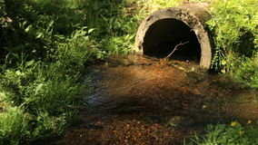 The nature of the river stream tube during the summer stock video footage