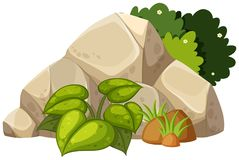 A nature rock on white background. Illustration vector illustration