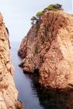 Nature rougeâtre d'océan méditerranéen de roche d'arbre images stock