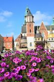 Nature in the Royal Castle Wawel Stock Image