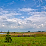 Nature Rural Landscape Royalty Free Stock Image