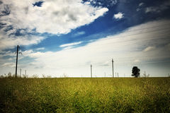 Nature Rural Landscape Royalty Free Stock Images