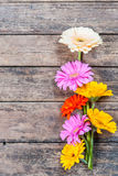 Nature rustic background with flowers Stock Photos