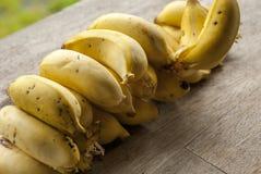 Nature& x27; s庭院-黄色香蕉 库存照片