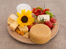 Nature's bounty. Cheese, tomatoes, peppers and sunflower. Royalty Free Stock Photography