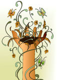 Nature's Hand Stock Image