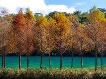 Nature&-x27; s koloru widmo zdjęcie stock