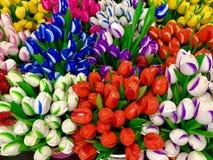 Nature& x27; s kolory Obrazy Stock