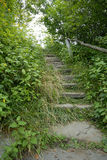 Nature's Stairway. Stone stairway with railing in a wooded setting Stock Photography