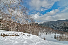 The nature of Sakhalin island, Russia. Stock Photography