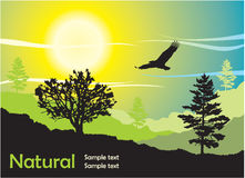 Nature scene vector illustration