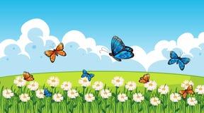 Nature scene background with butterflies flying in garden